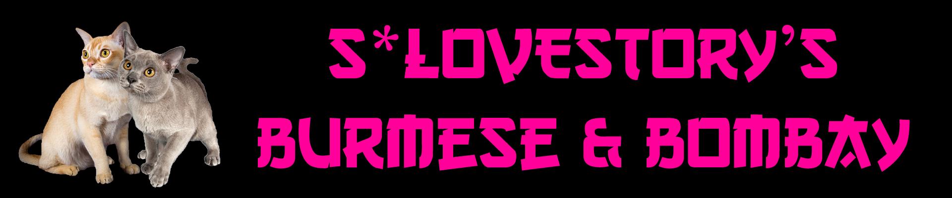 Lovestory's Burmese & Bombay